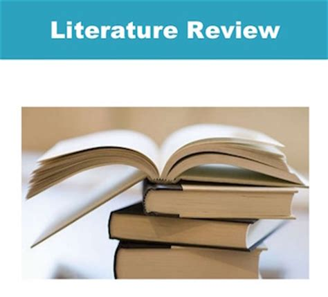 Nursing Literature Review Sample Papers Free Essays